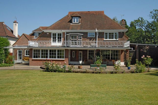 Thumbnail Detached house for sale in St. Clare Road, Colchester