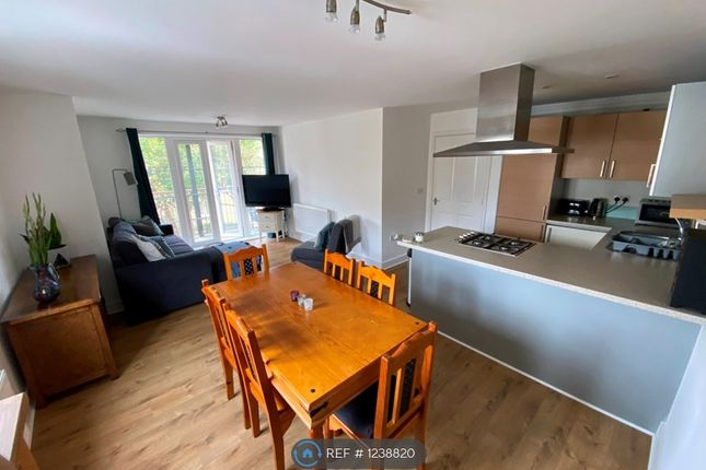 Thumbnail Flat to rent in Clarendon Way, Colchester