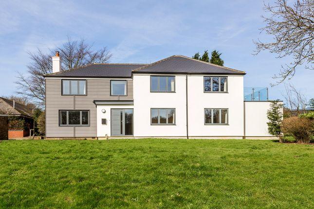Thumbnail Detached house to rent in Lasham, Alton