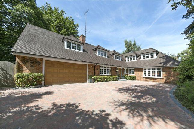 Thumbnail Detached house for sale in Brackenhill, Cobham, Surrey