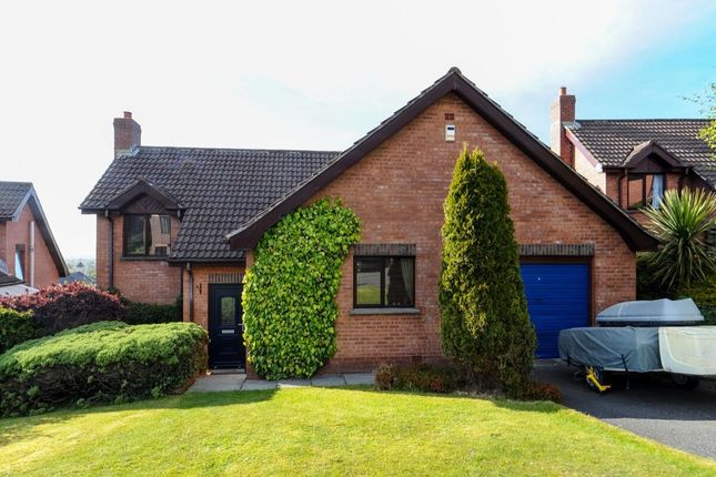 Thumbnail Detached house for sale in Elsmere Heights, Belfast