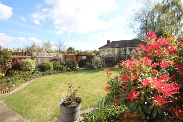 Thumbnail Detached house for sale in Warley Mount, Warley, Brentwood