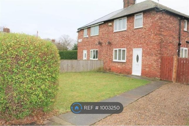 3 bed semi-detached house to rent in Sycamore Crescent, Middlesbrough TS6