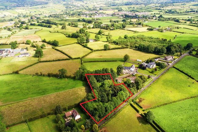 Thumbnail Commercial property for sale in Legaloy Road, Ballyclare