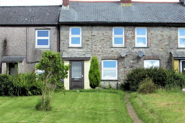 Thumbnail Terraced house to rent in Prospect Terrace, St Anns Chapel