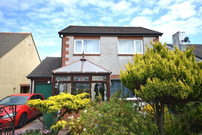 Thumbnail Semi-detached house to rent in Park Avenue, Seaton, Workington
