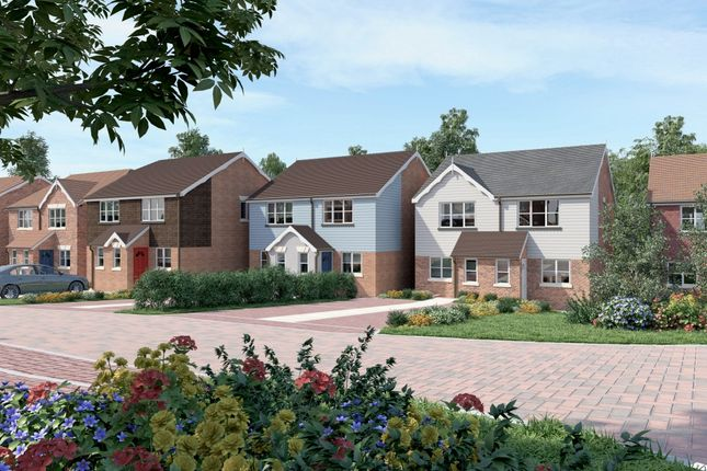 Thumbnail Semi-detached house to rent in Rossetti Gardens, St. Leonards-On-Sea