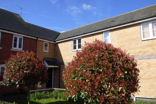Thumbnail Terraced house to rent in Ireland Avenue, Beeston, Nottingham