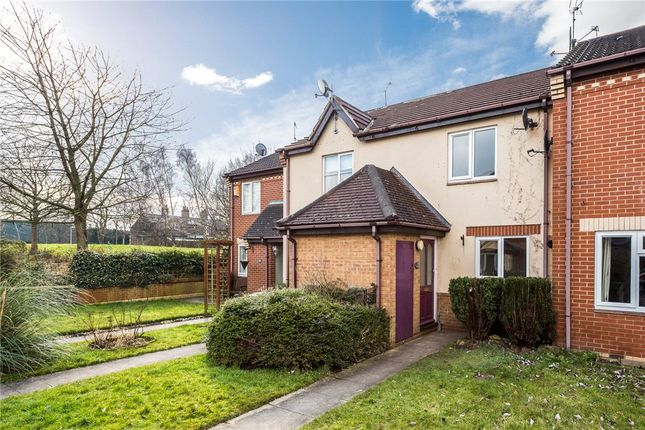 Thumbnail Terraced house to rent in Sycamore Drive, Harrogate, North Yorkshire