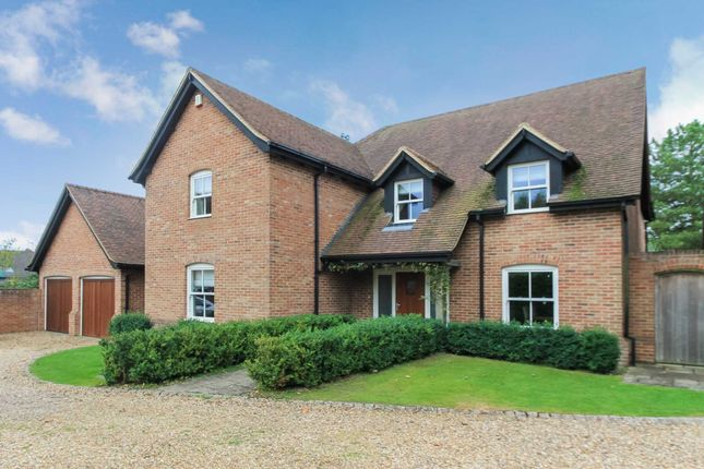 Thumbnail Detached house to rent in Icknield Way, Tring, Hertfordshire