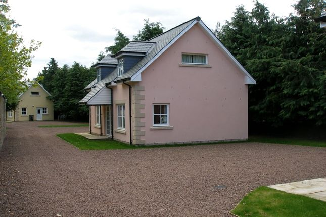 Thumbnail Property to rent in Coupar Angus Road, Blairgowrie