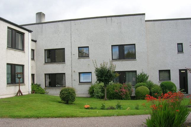 1 bed flat to rent in Scotsburn Court, Tain IV19