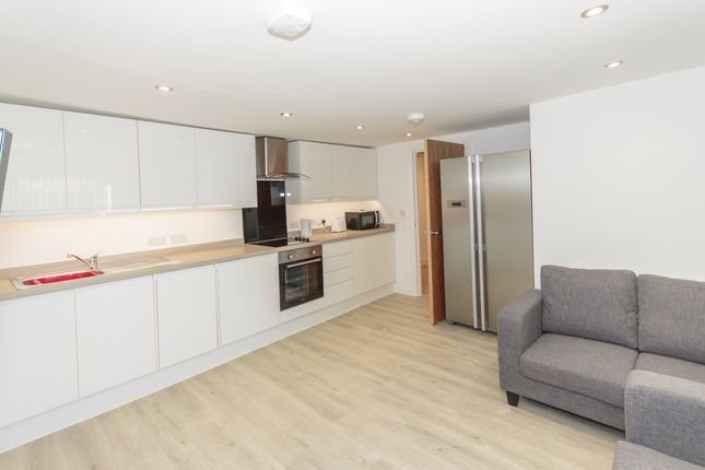 Thumbnail Flat to rent in Amity Place, Plymouth