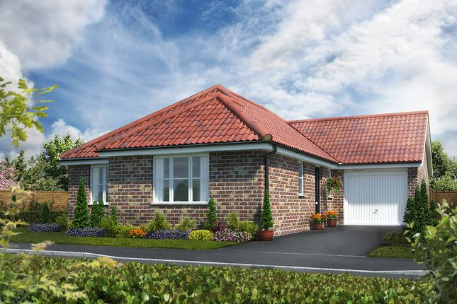Thumbnail Detached bungalow for sale in Norwich Road, Watton