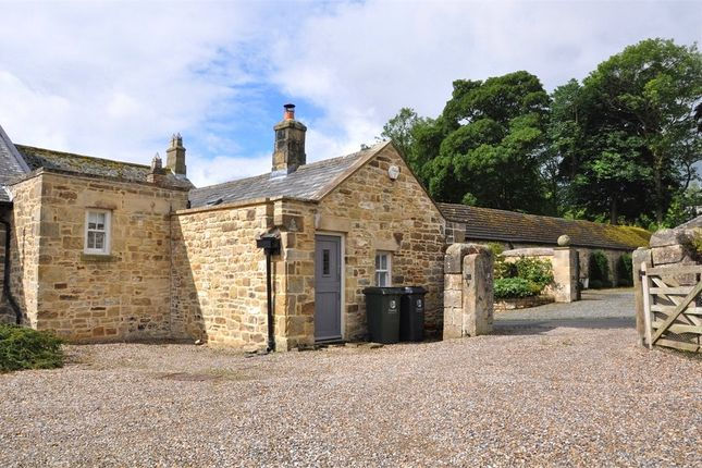 Thumbnail Semi-detached house to rent in Walwick, Hexham, Northumberland