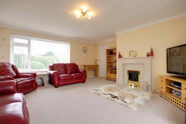 Living Room of Old Bideford Road, Sticklepath, Barnstaple EX31