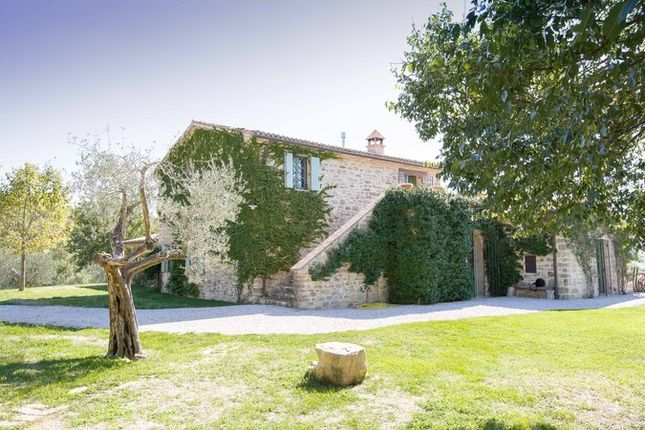 Img_2617 of Villa Martinazzi, Preggio, Umbertide, Umbria