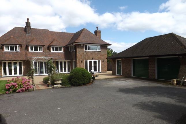 Thumbnail Detached house to rent in Woodland Rise, Studham, Dunstable