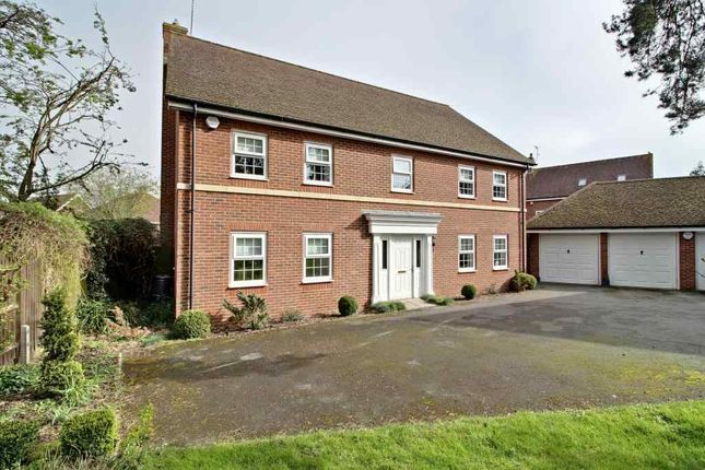 Thumbnail Detached house for sale in Creswell, Hook