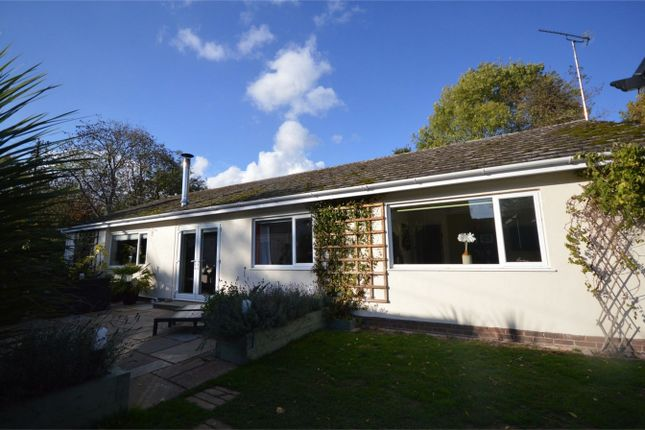 Thumbnail Detached bungalow for sale in Low Street, Sloley, Norwich