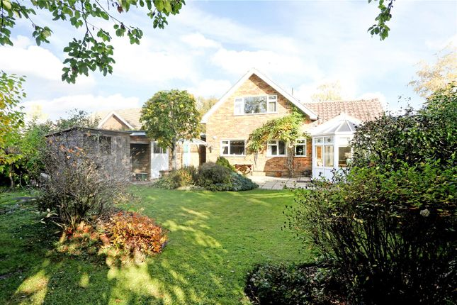 Thumbnail Detached house for sale in Cleve Way, Billingshurst, West Sussex