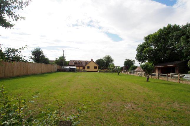 Thumbnail Property for sale in Swamp Lane, Great Ellingham, Attleborough