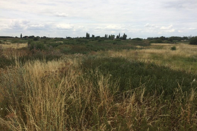 Thumbnail Land to rent in First Drove, Little Downham, Ely