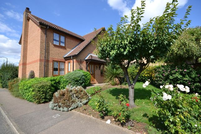 Thumbnail Detached house to rent in Langham Way, Ely
