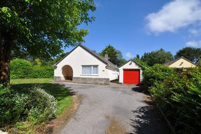 Thumbnail Bungalow to rent in Bushmead Drive, Ashley Heath, Ringwood