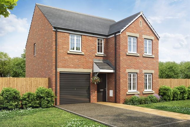 "Thumbnail Detached house for sale in ""The Kendal"" at Moss Grove, Newcastle-Under-Lyme"