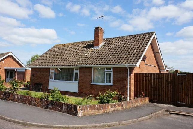 Thumbnail Detached bungalow for sale in Grange Gardens, Taunton