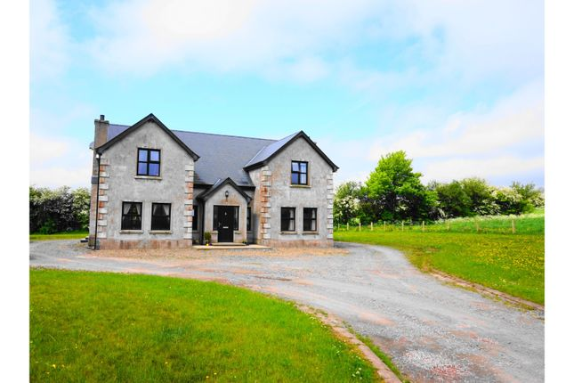 Thumbnail Detached house for sale in Radergan Road, Dungannon