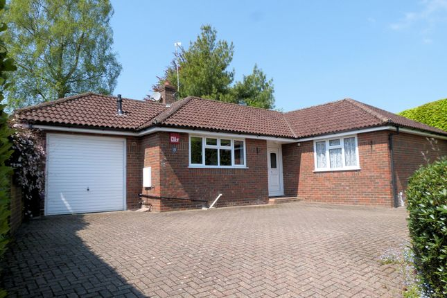 Thumbnail Detached bungalow to rent in Chappell Close, Liphook