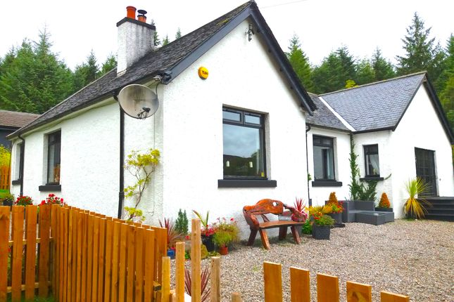 Thumbnail Detached bungalow for sale in Highland Cottage, Invermoriston