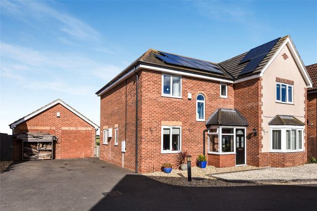 Thumbnail Detached house for sale in Willow Lane, Billinghay