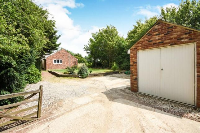 Thumbnail Bungalow for sale in Little Waltham, Chelmsford, Essex