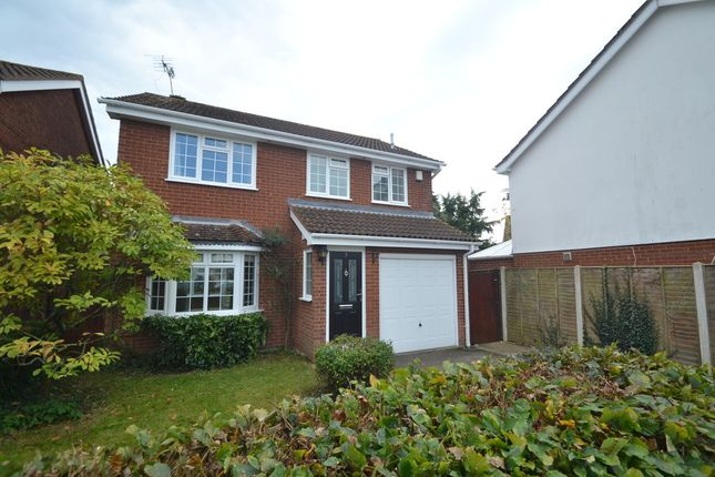 Thumbnail Detached house to rent in Wren Close, Hightown, Ringwood