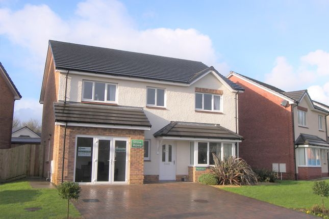 Thumbnail 4 bed detached house to rent in Tennant Grove, Skewen, Neath