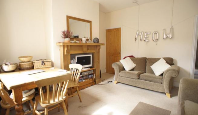 Thumbnail Terraced house to rent in Springvale Road, Sheffield