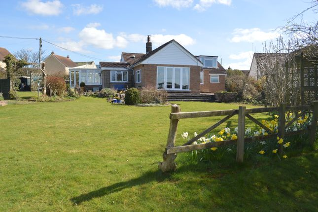 Thumbnail Detached bungalow for sale in College Arms Close, Stour Row, Shaftesbury, Dorset