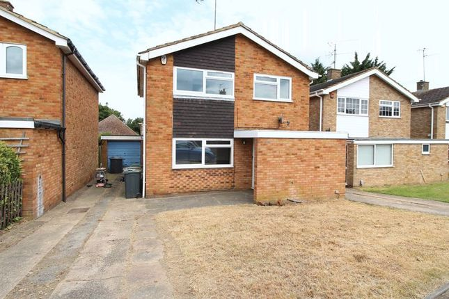 Thumbnail Detached house to rent in Needham Road, Luton