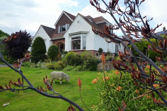 Thumbnail Detached bungalow for sale in Main Road, Pinhoe, Exeter