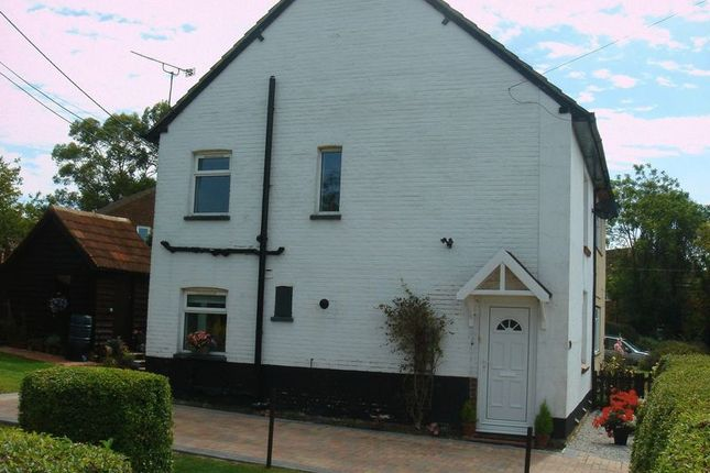Thumbnail Semi-detached house to rent in Mount Pleasant Road, Alton