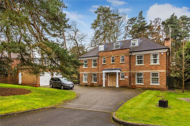 Thumbnail Detached house for sale in Holly Bank Road, Hook Heath, Surrey