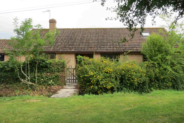 3 bed detached bungalow to rent in Mere Fish Farm, Ivymead, Mere, Warminster, Wiltshire