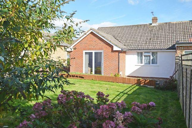 Thumbnail Semi-detached bungalow for sale in Vyne Close, Alton, Hampshire