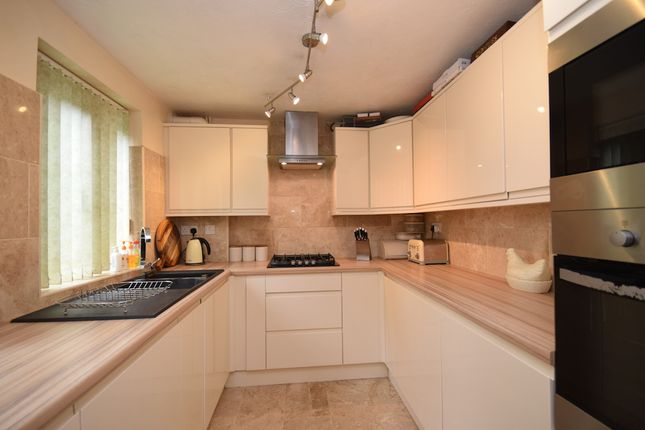 Thumbnail Semi-detached house for sale in Albourne Close, St. Leonards-On-Sea
