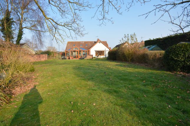 Thumbnail Property for sale in Holly Lane, Mutford, Beccles