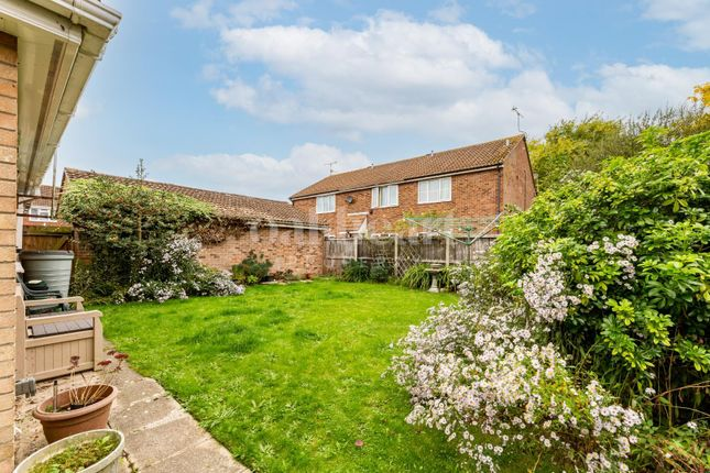 Thumbnail Detached bungalow for sale in Robert Way, Wivenhoe, Colchester