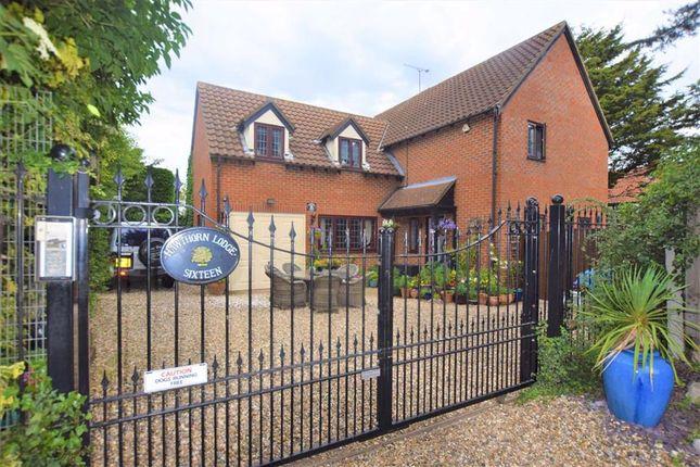 Thumbnail Detached house for sale in Tudor Court, Noak Bridge, Essex